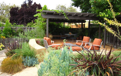 Houzz Call: What Are Your Spring Gardening Plans?