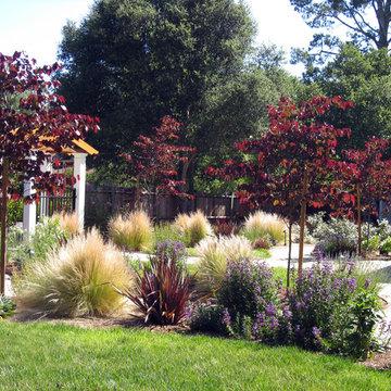 Mediterranean garden with curving pathways of DG and drought tolerant plants