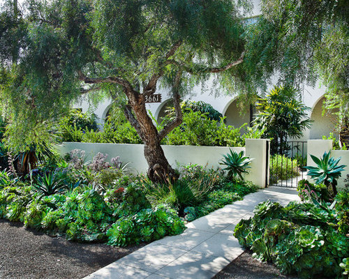 this is an example of a mediterranean courtyard garden in san diego