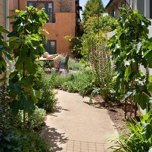 Создайте стильный интерьер: солнечный огород на участке на заднем дворе в средиземноморском стиле с освещенностью и покрытием из гранитной крошки - последний тренд