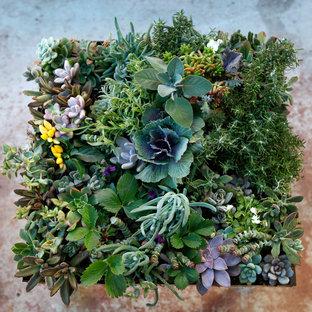 Idéer för att renovera en medelhavsstil trädgård