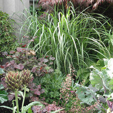 Landscape by Glenna Partridge Garden Design