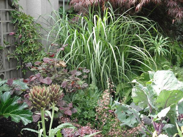 Landscape by Glenna Partridge Garden Design
