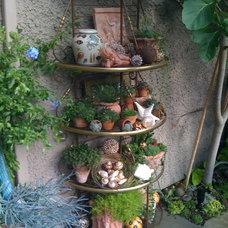 Mediterranean Landscape by Glenna Partridge Garden Design