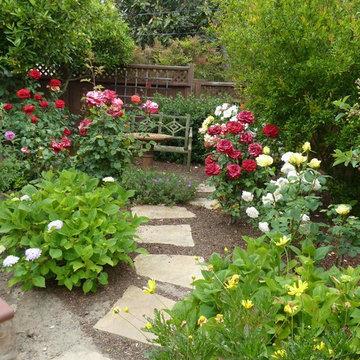 Mediterranean Rose Garden