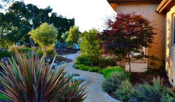 Mediterranean Xeriscape Garden