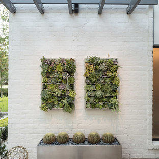 This is an example of a mid-sized contemporary drought-tolerant and full sun front yard concrete paver landscaping in Houston for spring.
