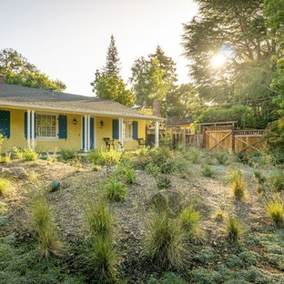 Inspiration for a large contemporary drought-tolerant front yard walkway in San Francisco.