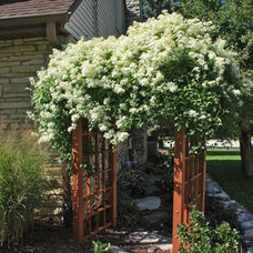 Traditional Landscape by Hawks Landscape Inc.