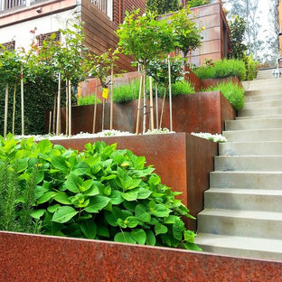 Design ideas for a small modern partial sun side yard retaining wall landscape in San Francisco for summer.