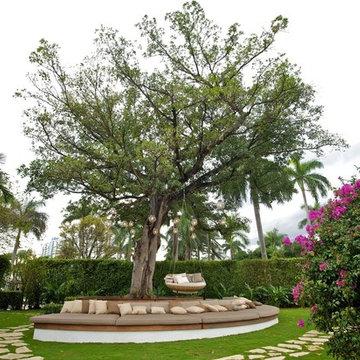 "Miami Beach ""Tree of Life"""