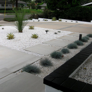 Photo of a mid-sized mid-century modern drought-tolerant and full sun front yard concrete paver landscaping in Orange County.