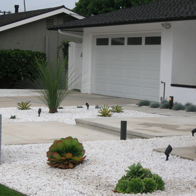 This is an example of a mid-sized mid-century modern drought-tolerant and full sun front yard landscaping in Orange County.