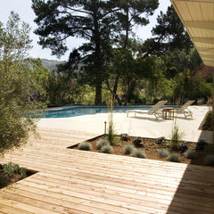 modern landscape by Integrated Design Studio, Inc.