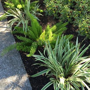 Idée de décoration pour un petit xéropaysage avant vintage au printemps avec une entrée ou une allée de jardin, une exposition partiellement ombragée et des pavés en béton.