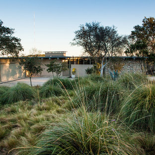 This is an example of a midcentury modern drought-tolerant front yard landscaping in Austin.