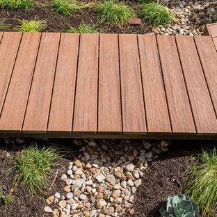 Cette photo montre un petit jardin moderne avec une entrée ou une allée de jardin et du gravier.