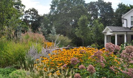 実りや紅葉の時期。秋の庭仕事を満喫しよう【10月のガーデニング】