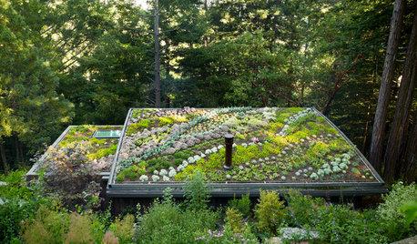 Renoverings-trend: Vi vil have smartere, sundere og grønnere hjem