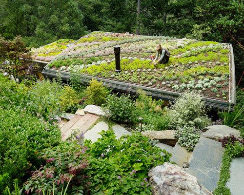 Rooftop Garden Houzz - Rooftop landscaping