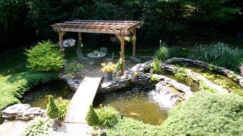Mimi Pond   Filtration Upgrade   Waterfall Restoration