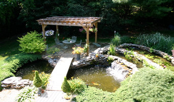 Mimi Pond | Filtration Upgrade | Waterfall Restoration