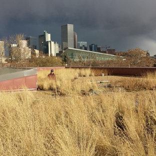 Foto di un giardino american style sul tetto