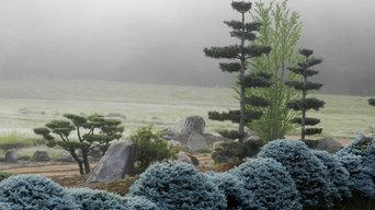 Misty Morning near the O-kurakomi