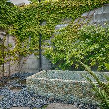 backyard beautification