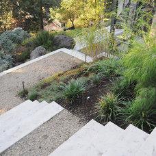 Modern Landscape by AFLA-Landscape Design