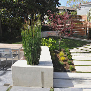 Inspiration for a modern front yard landscaping in San Francisco.