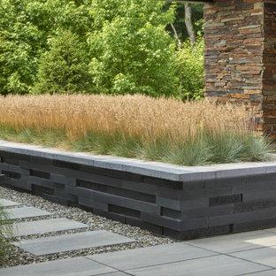 Idée de décoration pour un jardin arrière minimaliste avec des pavés en béton.