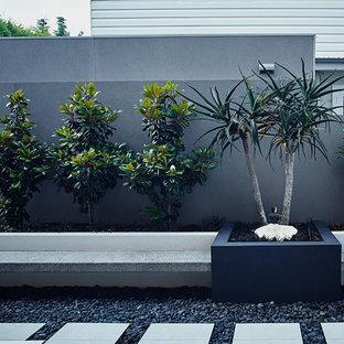 Idee per un giardino minimal nel cortile laterale con un ingresso o sentiero e pavimentazioni in pietra naturale