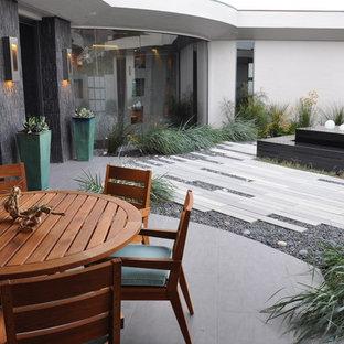 サンルイスオビスポのコンテンポラリースタイルのおしゃれな庭の写真