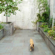 Contemporary Landscape by Outside Space NYC Landscape Design