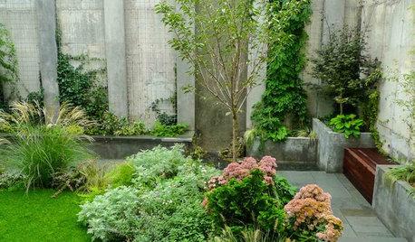 Houzz США: Зеленый дворик у многоэтажки в Бруклине
