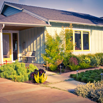Modern cottage with low water frontyard planting