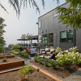 This is an example of a contemporary full sun side yard mulch vegetable garden landscape in Seattle.