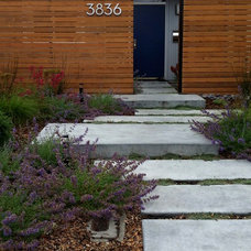 Midcentury Landscape by Bonnie Brock Landscape Design