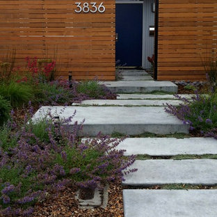This is an example of a mid-century modern front yard concrete paver landscaping in San Francisco.