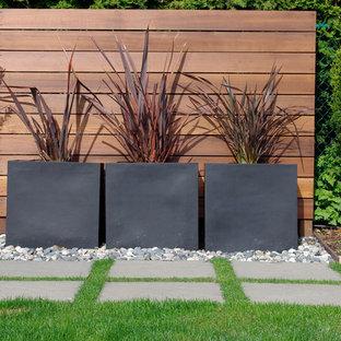 Ispirazione per un giardino moderno con un giardino in vaso