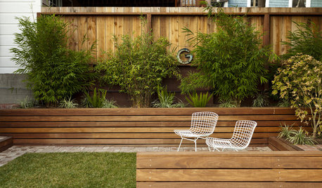8 Ways to Get Your Backyard Ready for Spring