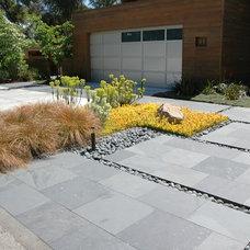 Modern Landscape by Keith Willig Landscape Services, Inc.