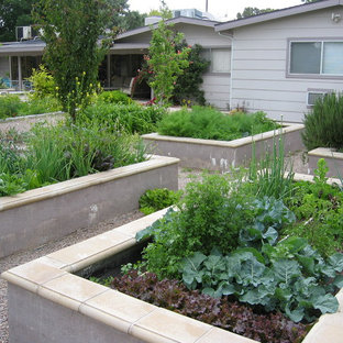 Photo of a transitional vegetable garden landscape in Las Vegas.