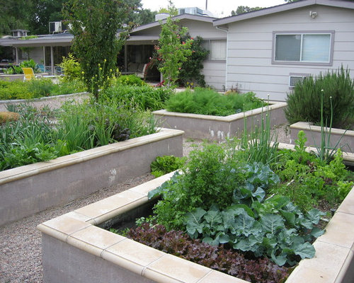 Photo Of A Modern Vegetable Garden Landscape In Las Vegas