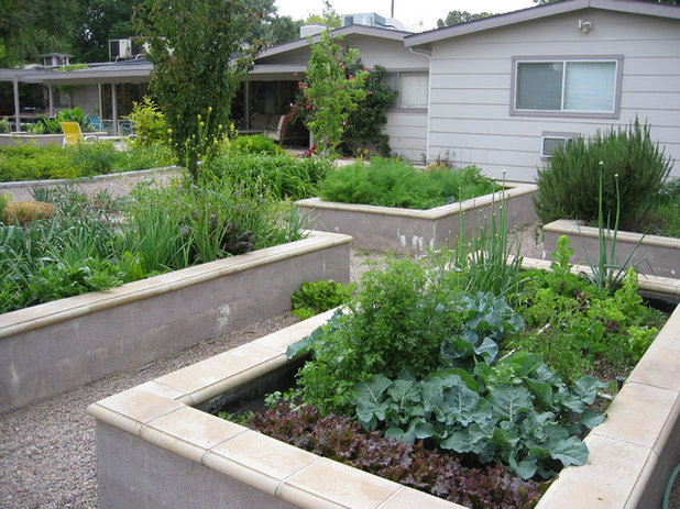 8 materials for raised garden beds for Best material for raised garden beds