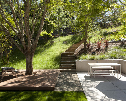deck around tree home design ideas  pictures  remodel and decor