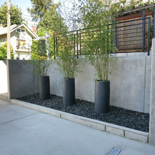Medium sized modern front driveway fully shaded garden in Seattle with concrete paving.