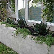 Modern Landscape by Dig Your Garden Landscape Design