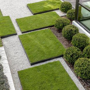 Geräumiger Moderner Garten Mit Gartenweg Und Direkter Sonneneinstrahlung In  Houston